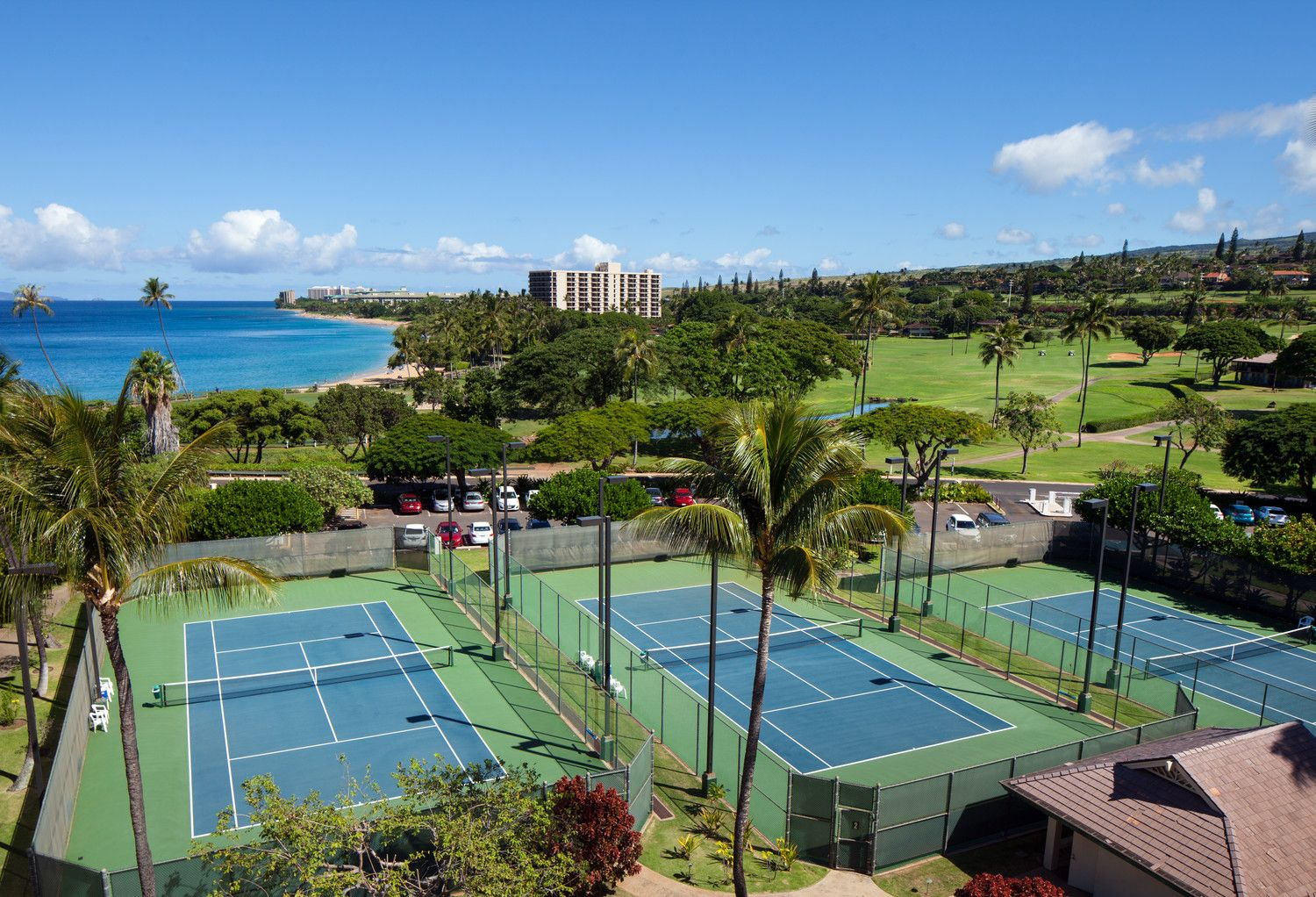 Sheraton Maui Resort & Spa - Maui activities